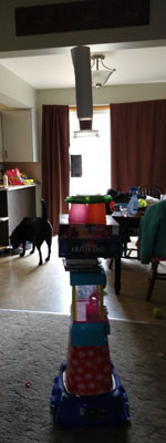 Tower of household items
